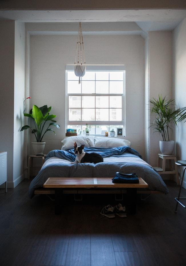 Dormitorio con personalidad