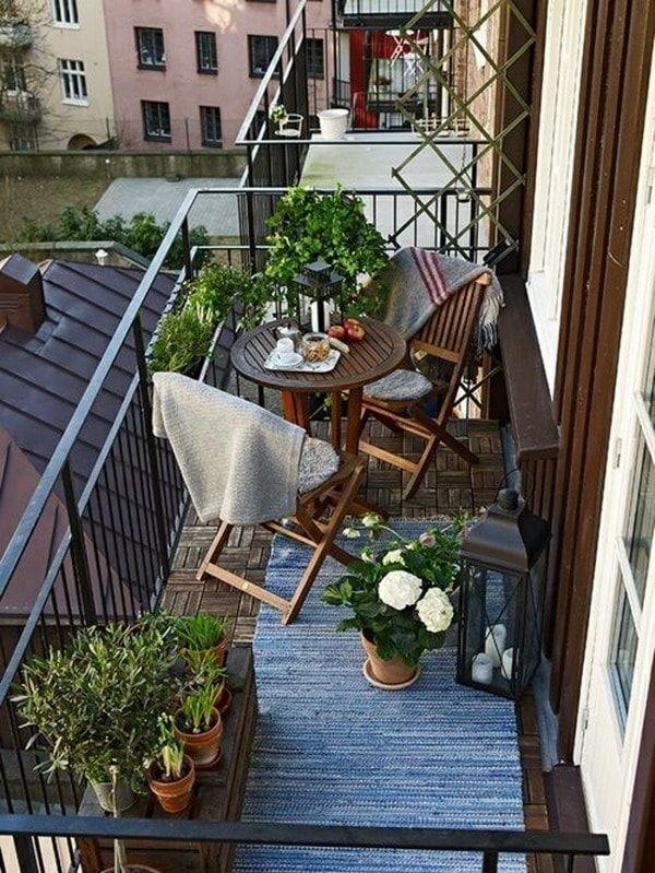 Terraza. Plantas
