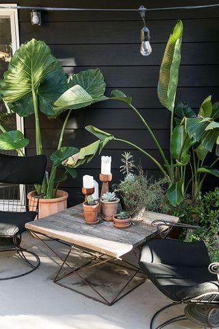 Jardines-interiores